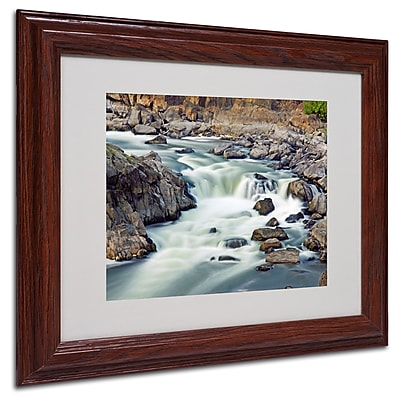 CATeyes 'A Treasure' Matted Framed Art - 11x14 Inches - Wood Frame