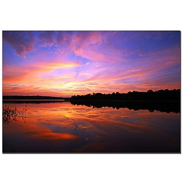 Trademark Fine Art CATeyes 'Gates to Heaven' Canvas Art