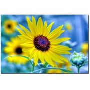 Trademark Fine Art CATeyes 'Let Stories Happen to you' Canvas Art