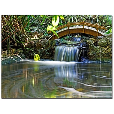 Trademark Fine Art CATeyes 'River of Eternity' Canvas Art