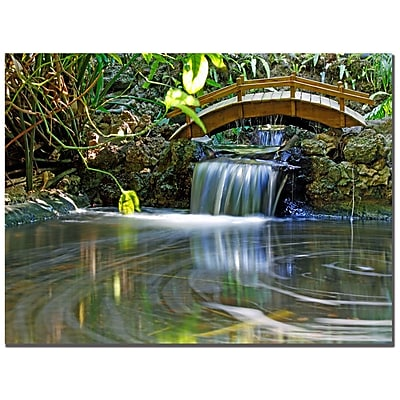 Trademark Fine Art CATeyes 'River of Eternity' Canvas Art 35x47 Inches