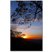 Trademark Fine Art CATeyes 'Drip with Sunset' Canvas Art
