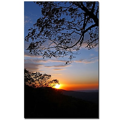 Trademark Fine Art CATeyes 'Drip with Sunset' Canvas Art