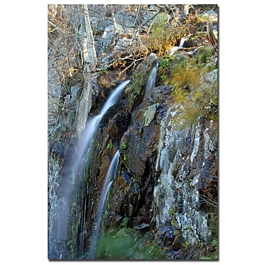 Trademark Fine Art CATeyes 'Flows' Canvas Art