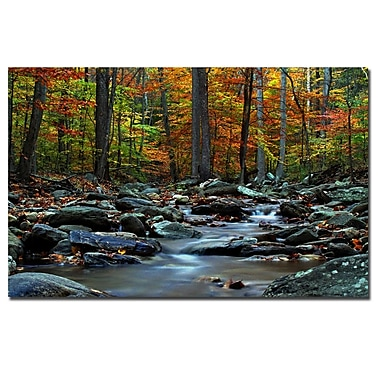 Trademark Fine Art CATeyes 'Hymn an Autumn' Canvas Art