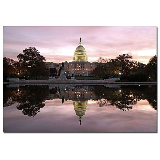 Trademark Fine Art CATeyes 'Necessity of Reflection' Canvas Art 22x32 Inches