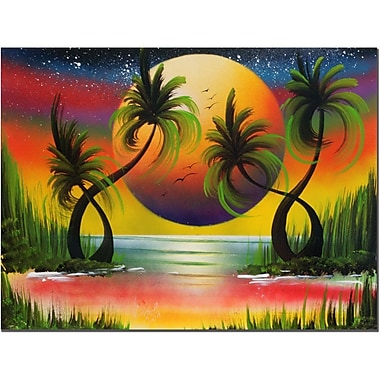 Trademark Fine Art Lagoon at Sunset by Conrad Canvas Art Ready to Hang