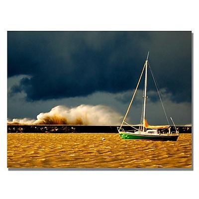 Trademark Fine Art 'Lake Erie Storm' 18