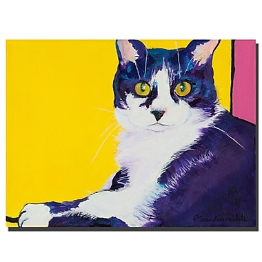 Trademark Fine Art Simon by Pat Saunders-White-canvas, Ready to Hang