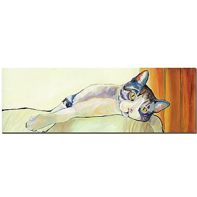 Trademark Fine Art Pat Saunders-White, 'Sunbather' Canvas Art 16x47 Inches