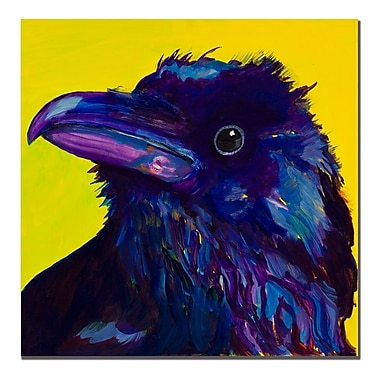 Trademark Fine Art Pat Saunders-White 'Corvus' Canvas Art