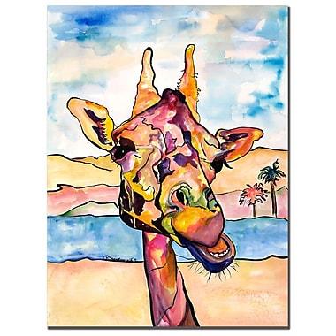 Trademark Fine Art Pat Saunders-White 'Puzzles' Canvas Art