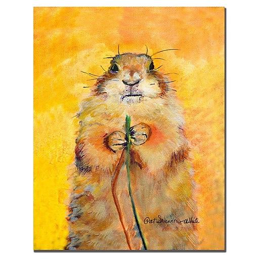 Trademark Fine Art Pat Saunders-White 'Target' Canvas Art