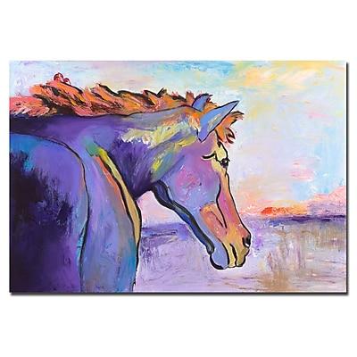 Trademark Fine Art Pat Saunders-White, 'Frosty Morning' Canvas Art