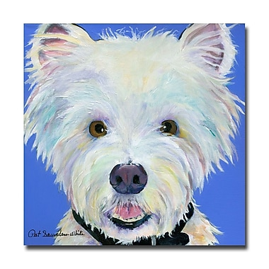 Trademark Fine Art Pat Saunders-White 'Amos' Canvas Art