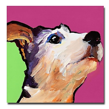 Trademark Fine Art Pat Saunders-White 'Ollie' Canvas Art