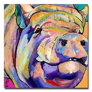 Trademark Fine Art Pat Saunders-White 'Potbelly' Canvas Art