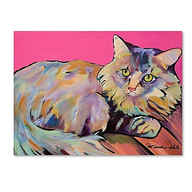 Trademark Fine Art Pat Saunders 'Catatonic' Canvas Art 35x47 Inches