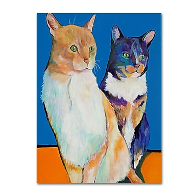 Trademark Fine Art Pat Saunders 'Dos Amores' Canvas Art 35x47 Inches