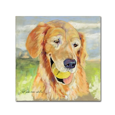 Trademark Fine Art Pat Saunders 'Gus' Canvas Art 35x35 Inches