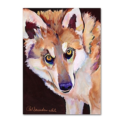 Trademark Fine Art Pat Saunders 'Night Eyes' Canvas Art 26x32 Inches