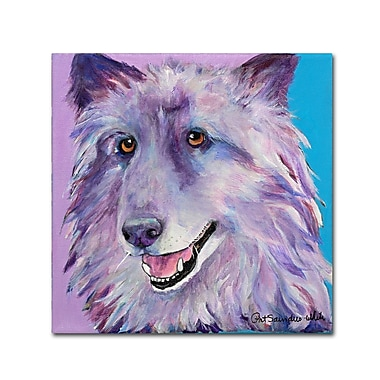 Trademark Fine Art Pat Saunders 'Puppy Dog' Canvas Art 14x14 Inches