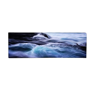 Trademark Fine Art Philippe Sainte-Laudy 'Allegro' Canvas Art 6x19 Inches