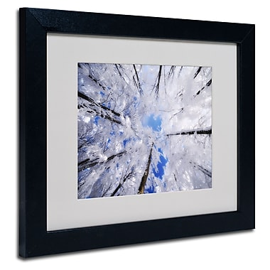 Trademark Fine Art Philippe Sainte-Laudy 'Carousel' Matted Art Black Frame 11x14 Inches