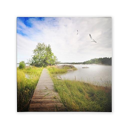 Trademark Fine Art Philippe Sainte-Laudy 'Disorganized' Canvas Art 24x24 Inches