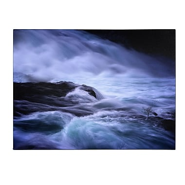 Trademark Fine Art Philippe Sainte-Laudy 'Distractions' Canvas Art 14x19 Inches