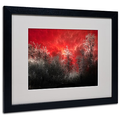 Trademark Fine Art Philippe Sainte-Laudy 'Hot and Cold' Matted Art Black Frame 16x20 Inches