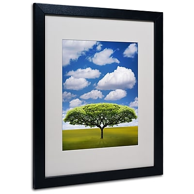 Trademark Fine Art Philippe Sainte-Laudy 'Improbable Open Space' Matted Black Frame 16x20 Inches