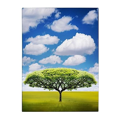Trademark Fine Art Philippe Sainte-Laudy 'Improbable Open Space' Canvas Art 14x19 Inches