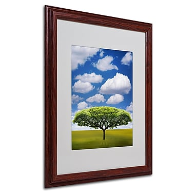 Philippe Sainte-Laudy 'Improbable Open Space' Matted Framed - 16x20 Inches - Wood Frame