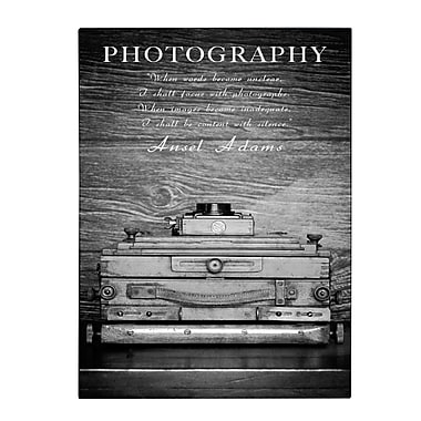 Trademark Fine Art Philippe Sainte-Laudy 'Photography B&W' Canvas Art 14x19 Inches