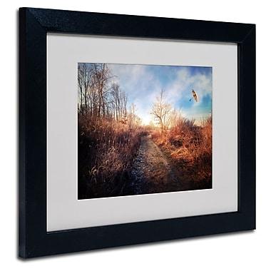 Trademark Fine Art Philippe Sainte-Laudy 'Blast of Wind' Matted Art Black Frame 11x14 Inches