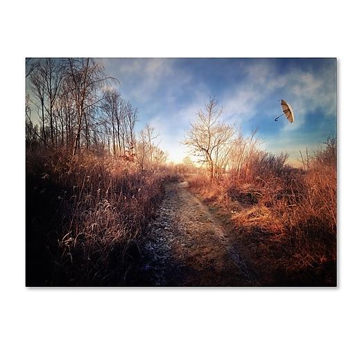 Trademark Fine Art Philippe Sainte-Laudy 'Blast of Wind' Canvas Art 16x24 Inches