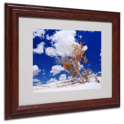 Philippe Sainte-Laudy 'Burn Tree' Matted Framed Art - 11x14 Inches - Wood Frame