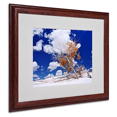 Philippe Sainte-Laudy 'Burn Tree' Matted Framed Art - 16x20 Inches - Wood Frame