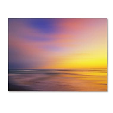 Trademark Fine Art Philippe Sainte-Laudy 'Metallic Sunset' Canvas Art 14x19 Inches