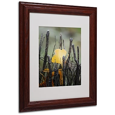 Philippe Sainte-Laudy 'Prisoner Fall' Matted Framed Art - 11x14 Inches - Wood Frame