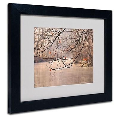 Trademark Fine Art Philippe Sainte-Laudy 'Skylight' Matted Art Black Frame 11x14 Inches