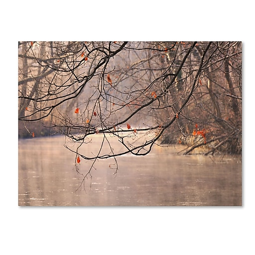 Trademark Fine Art Philippe Sainte-Laudy 'Skylight' Canvas Art 30x47 Inches
