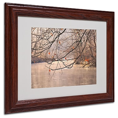 Philippe Sainte-Laudy 'Skylight' Matted Framed Art - 11x14 Inches - Wood Frame