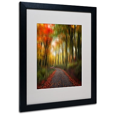 Trademark Fine Art Philippe Sainte-Laudy 'The Lost Path' Matted Art Black Frame 16x20 Inches