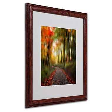 Philippe Sainte-Laudy 'The Lost Path' Matted Framed Art - 16x20 Inches - Wood Frame