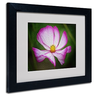 Trademark Fine Art Philippe Sainte-Laudy 'Valentine's Day' Matted Art Black Frame 11x14 Inches