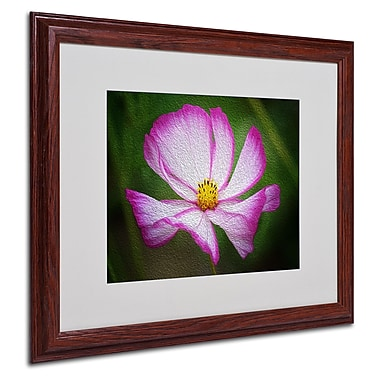 Philippe Sainte-Laudy 'Valentine's Day' Matted Framed Art - 16x20 Inches - Wood Frame