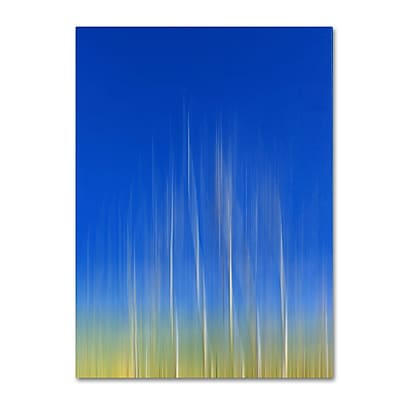 Trademark Fine Art Philippe Sainte-Laudy 'Vertical Activity' Canvas Art 30x47 Inches