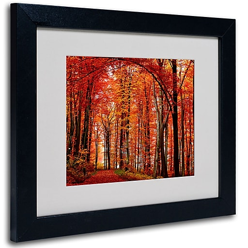 Trademark Fine Art Philippe Sainte-Laudy 'The Red Way' Matted Art Black Frame 11x14 Inches